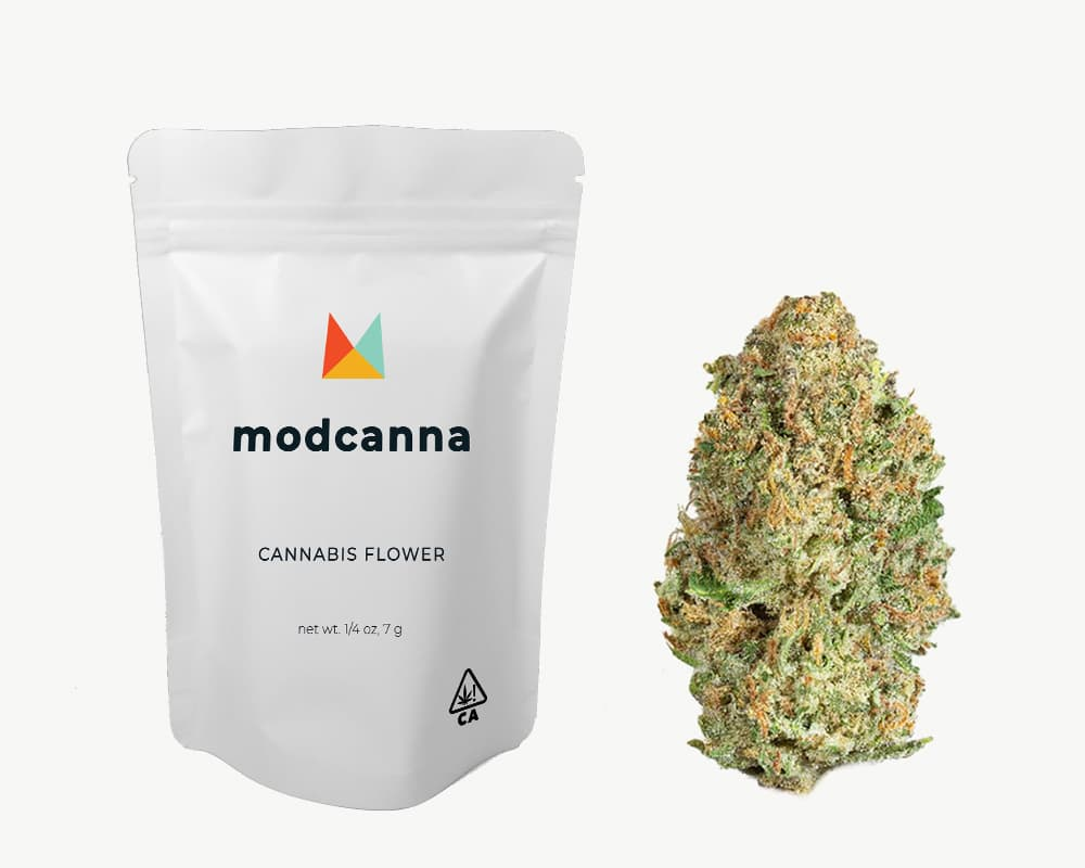 5 Alive Sativa Strain by Modcanna | Splitbud Deals